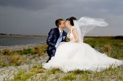 Free Wedding Stock Photography - 25094202