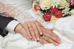 Free Wedding Stock Image - 25219431