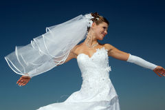 Free Wedding Stock Photos - 3110633