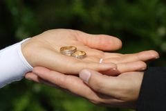 Wedding. A wedding couple hands with rings Stock Image