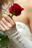 Wedding. Day of wedding the most solemn and unforgettable in a life of each person Royalty Free Stock Images