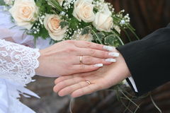 Wedding. Bride and groom's hands, with wedding rings on, white roses in the background Royalty Free Stock Photography