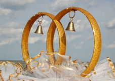 Wedding. Ring, , bridegroom, bride Stock Images