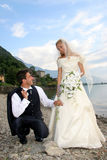 Wedding. Pictures, the couple just married Royalty Free Stock Images