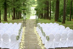 Before wedding. Expectation of wedding in fine park with a pond on white chairs, выстоенных beside Stock Image