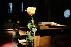 Wedding. Rose in a chapel Royalty Free Stock Photo