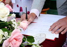 Wedding. Day ceremony marriage marriageable young man eligible bachelor Royalty Free Stock Photography