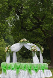 Wedding. The outdoor wedding of a park Royalty Free Stock Image