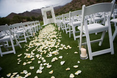 Wedding Aisle. View of a wedding aisle with white and yellow rose petals Royalty Free Stock Photos