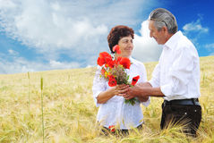 Wedding anniversary Stock Photography