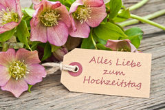 Wedding anniversary. Pink flowers and card to wedding anniversary Royalty Free Stock Photography