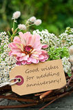 Wedding anniversary. Pink roses and card to wedding anniversary Stock Image
