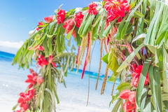 Wedding arch decorated with palm trees and flowers on Stock Photography
