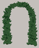 Wedding arch of green leaves. Template for wedding ivitations or greeting cards with a green wedding arch Stock Photo