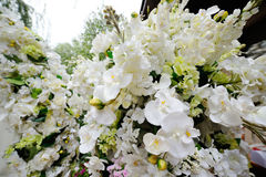 Wedding arch of white orchids and roses Stock Image