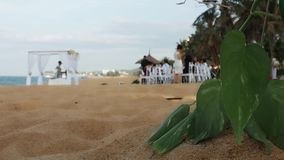 Wedding auf dem Strand stock footage