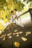 Wedding in autumn stock photography