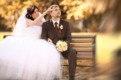 Wedding  at autumn nature Stock Images