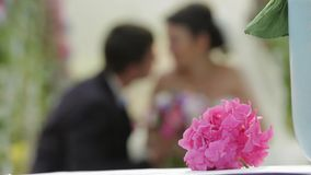 Wedding On The background blur stock footage