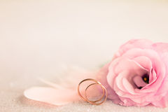 Wedding  Background with gold Rings, gentle flower and light pin. Wedding  Background with gold Rings, Eustoma rose flower and light pink feather Royalty Free Stock Images