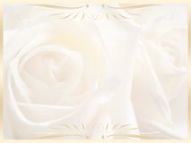 Wedding background , invitation Royalty Free Stock Photo