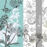 Wedding background with orchids Stock Images