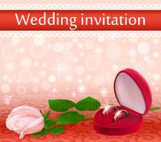 Wedding background with a white rose and rings Royalty Free Stock Image