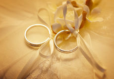 Wedding bands. Pair of wedding bands tied together Stock Photography