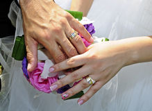 Wedding bands Royalty Free Stock Photo