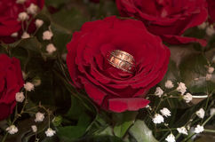 Wedding Bands and roses Royalty Free Stock Image