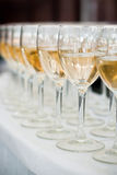 The Wedding Banquet. Banquet in the restaurant. Glasses of champagne in several rows on a mirror tray Stock Images