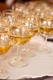 The Wedding Banquet. Banquet in the restaurant. Glasses of champagne in several rows on a mirror tray Royalty Free Stock Photography