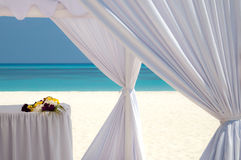 Wedding at the beach. Wedding at a beautiful beach on the maldives Royalty Free Stock Images
