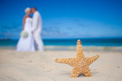 Wedding on the beach Royalty Free Stock Photo