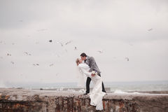 Wedding on the beach in winter. Wedding in winter on the beach Stock Photography