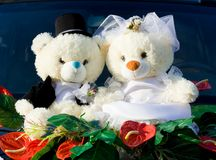 Wedding bears. Stock Image