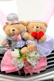 Wedding bears Stock Images