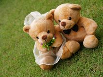Free Wedding Bears On The Grass Stock Images - 3580534