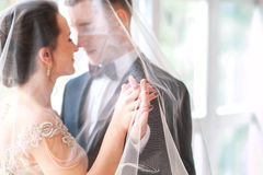 Wedding.Beautiful bride and groom portrait with veil over face. Stylish Loving wedding couple kissing and hugging Stock Images