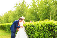 Wedding, Beautiful Romantic Bride and Groom Kissing and Embracing Stock Photos