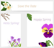 Wedding or birthday invitation spring flower celebration card vector. Stock Images