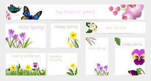 Wedding or birthday invitation spring flower celebration cards vector. Vintage floral cards romantic floral background nature garden blossom. Wedding or Royalty Free Stock Image