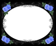 Wedding Blue roses border black. 3D Illustrated Blue roses design element for Valentine , wedding invitation background, border or frame with copy space Royalty Free Stock Photos