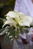 Wedding boquet. Brides wedding boquet of cala lilies stock photos