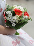 Wedding bouquet. Is in the hands of fiancee Stock Images