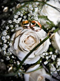 Wedding bouquet. With two rings Stock Image