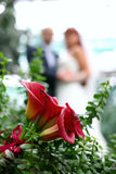 Wedding bouquet. In the grass on the rear can see the newlyweds Royalty Free Stock Image