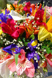 Wedding Bouquet. Of multi-color flowers Royalty Free Stock Images