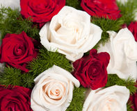 Free Wedding Bouquet Royalty Free Stock Photos - 15664298