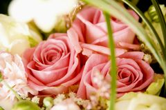 Wedding bouquet. Close up of wedding bouquet of roses Royalty Free Stock Photo